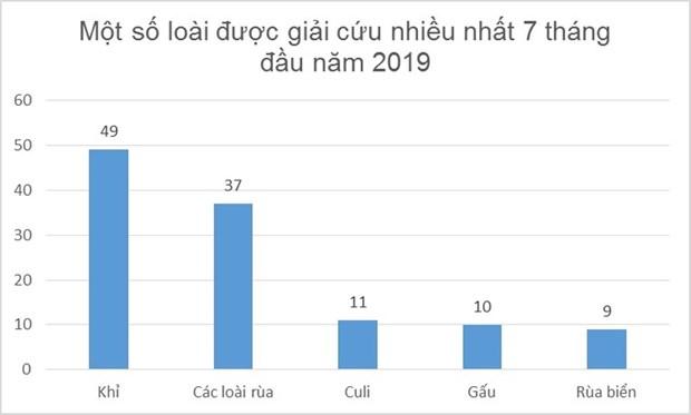ENV cuu ho 146 ca the dong vat hoang da tu dau nam 2019 hinh anh 3
