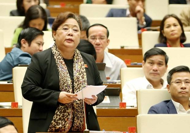 Bo Hoi dong Nhan dan phuong: Can than trong vi ''dung'' Hien phap hinh anh 2
