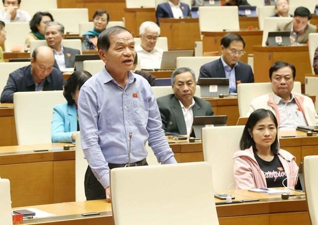 Bo Hoi dong Nhan dan phuong: Can than trong vi ''dung'' Hien phap hinh anh 1