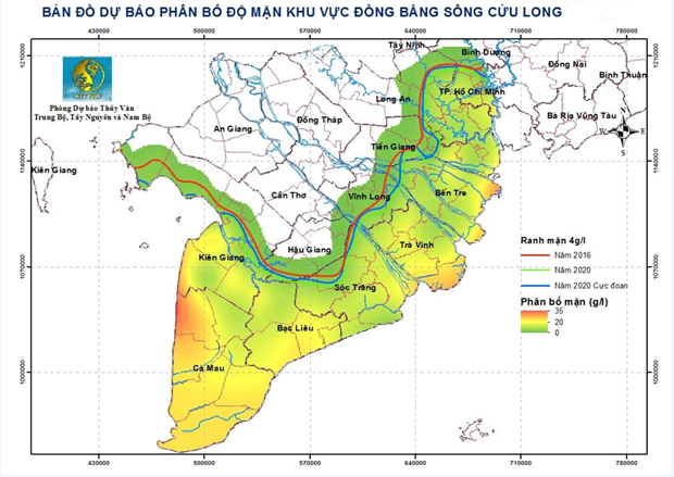 Vua lua so 1 Viet Nam: Xam nhap man con tang tu cac dot trieu cuong hinh anh 1