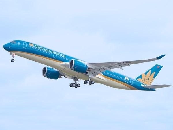 Hang hang khong Nhat Ban thau tom co phan Vietnam Airlines hinh anh 1