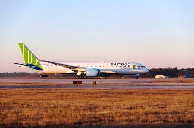 Bamboo Airways dat muc tieu chiem 30% thi phan noi dia nam 2020 hinh anh 1