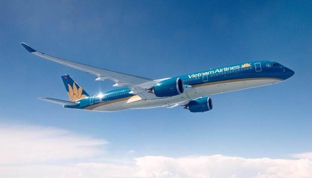 Vietnam Airlines se duoc Nha nuoc 'bom von' de vuot dich COVID-19 hinh anh 1