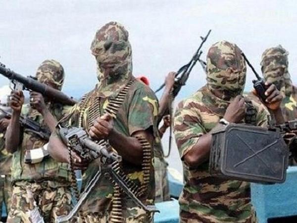 Phien quan Boko Haram bat coc phu nhan Pho Thu tuong Cameroon hinh anh 1