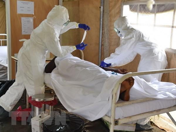 Benh nhan Nhat Ban tro ve tu vung dich ve am tinh voi Ebola hinh anh 1