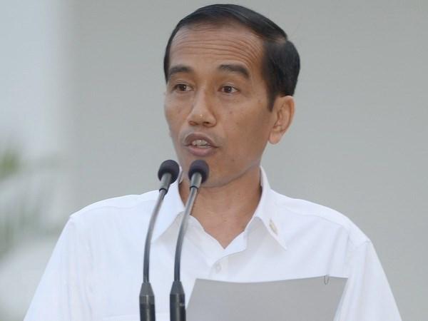 Indonesia xoa bo han che doi voi bao chi nuoc ngoai tai Papua hinh anh 1