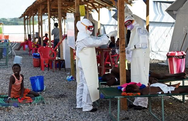 Chau Phi lo doi pho Ebola va nguy co cum gia cam bung phat hinh anh 1