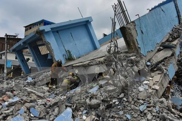 [Video] 120.000 tre em Ecuador khong duoc toi truong vi dong dat hinh anh 1