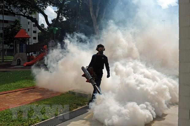 So ca nhiem virus Zika o Singapore van tiep tuc tang nhanh hinh anh 1