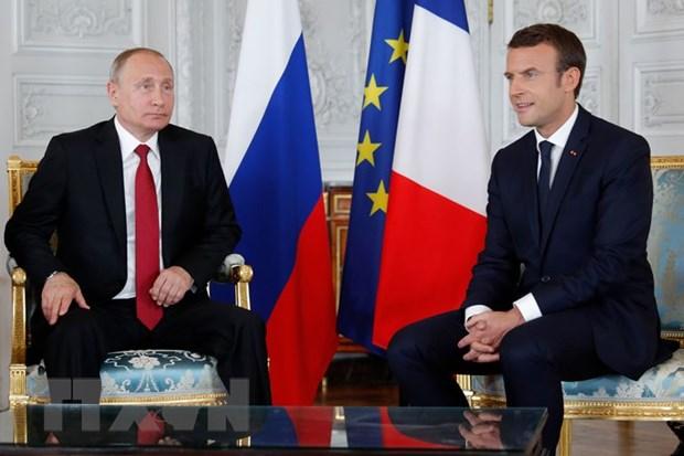 Tong thong Nga Vladimir Putin bac cao buoc can thiep bau cu Phap hinh anh 1