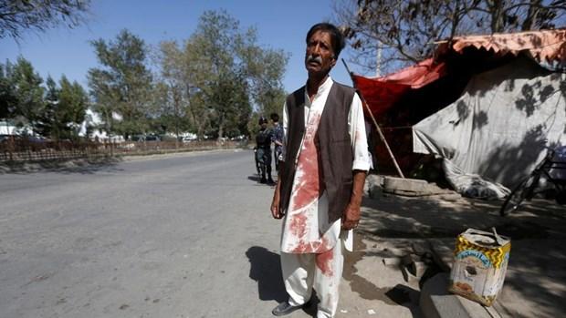 Afghanistan: Den tho Shi'ite bi nem luu dan khien 16 nguoi chet hinh anh 1