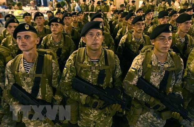 Ukraine bat dau tap tran chung thuong nien voi My va NATO hinh anh 1