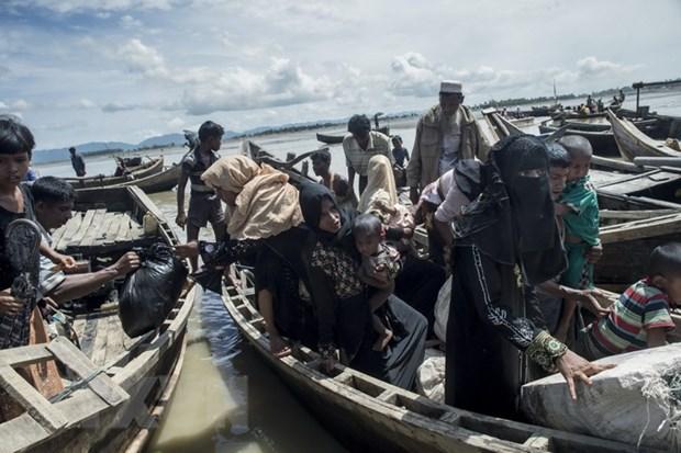 UNHCR bao dong ve viec nguoi Hoi giao Rohingya o at sang Bangladesh hinh anh 1
