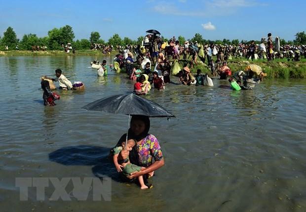 Myanmar cap the xac thuc nhan than cho 7.000 nguoi o Rakhine hinh anh 1