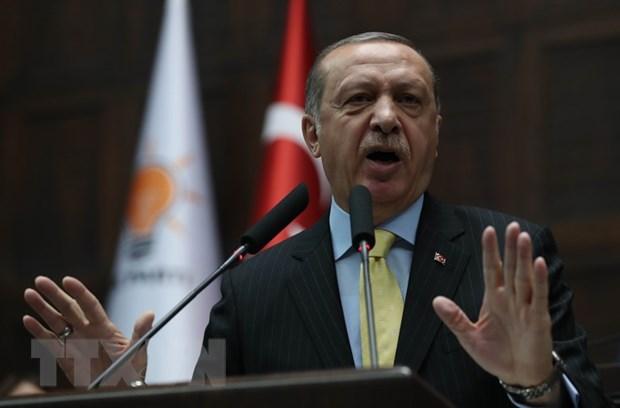 Tong thong Erdogan cao buoc NATO tap tran nham vao nguoi Tho Nhi Ky hinh anh 1