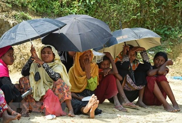 Bangladesh, Myanmar bat dau dam phan hoi huong nguoi Rohingya hinh anh 1