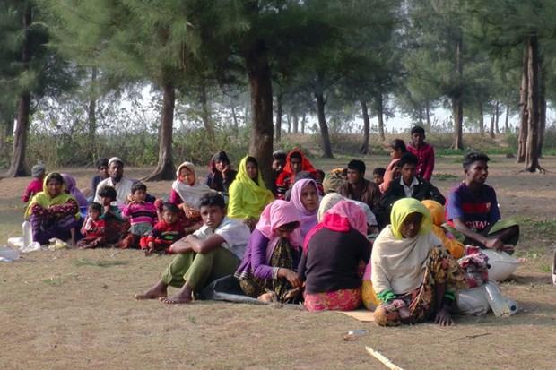 Myanmar se som hoi huong nguoi Rohingya bat chap canh bao cua LHQ hinh anh 1