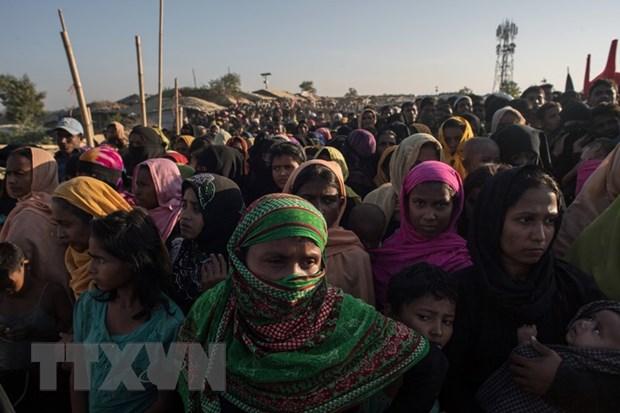 Myanmar cho hoi huong gia dinh nguoi Rohingya dau tien hinh anh 1