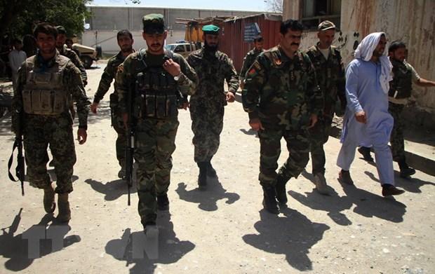 Giao tranh tai mien Bac Afghanistan, 13 nguoi thiet mang hinh anh 1