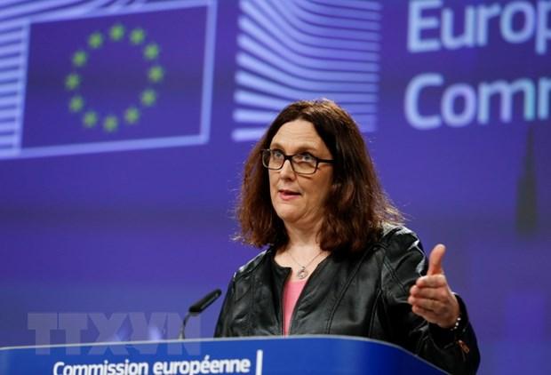 EU san sang thao luan voi My de giai quyet tranh cai thuong mai hinh anh 1
