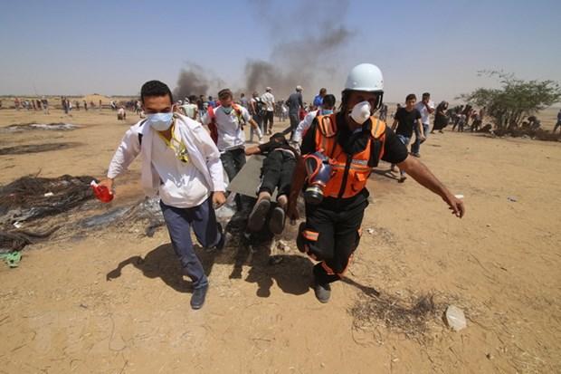 Palestine: Israel phai chiu trach nhiem ve nhung cuoc tan cong hinh anh 1