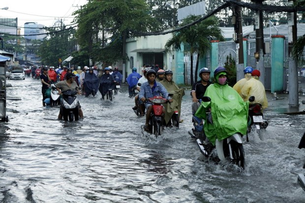 Chong ngap cho TP. Ho Chi Minh: Quan ly chat qua trinh do thi hoa hinh anh 1