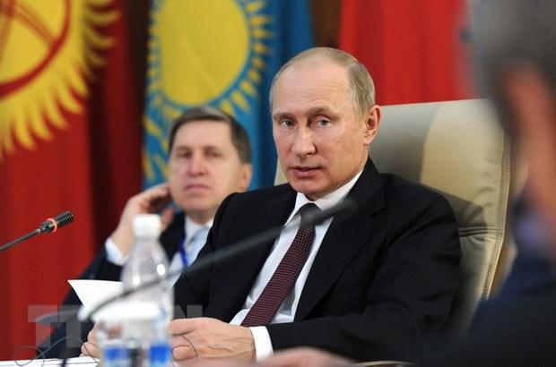 Moskva can nhac to chuc hoi nghi thuong dinh Nga-chau Phi hinh anh 1