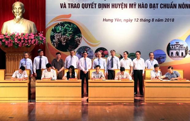 Nhan long dua Hung Yen tro thanh 'ngoi sao' ve thu-chi ngan sach hinh anh 2