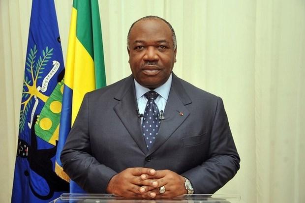Lien minh chau Au keu goi Gabon to chuc bau cu Quoc hoi cong bang hinh anh 1