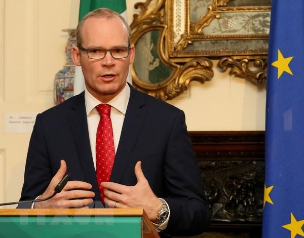 Van de Brexit: Ireland se khong ngan can viec gia han Dieu khoan 50 hinh anh 1