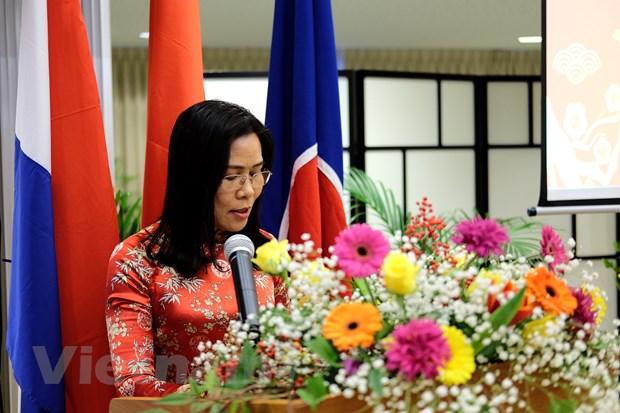 Cong dong nguoi Viet o Ha Lan nao nuc gap mat mung Xuan Ky Hoi hinh anh 2