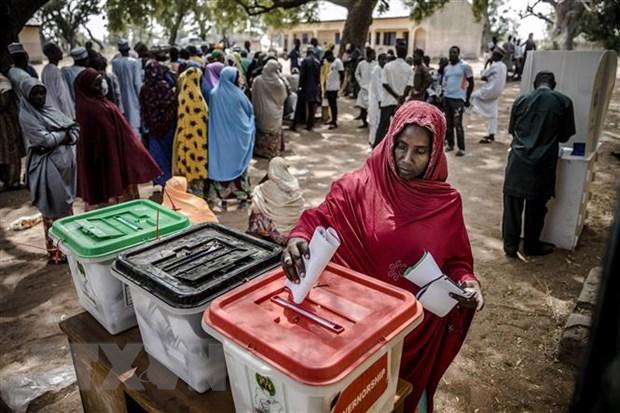 Nigeria: Phe doi lap cao buoc ket qua bau cu tong thong gian lan hinh anh 1