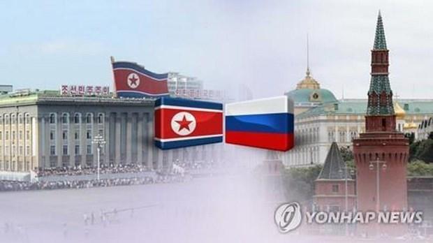 'Quan gia' cua nha lanh dao Trieu Tien Kim Jong-un dang o Nga hinh anh 1