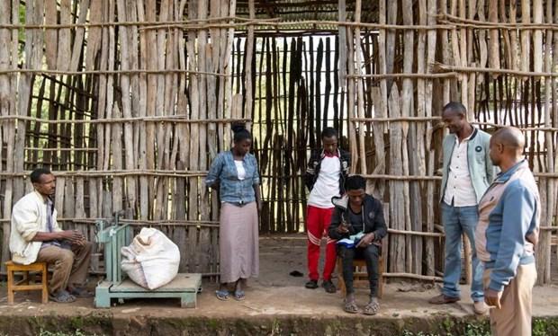 Ethiopia: Nhom sac toc thieu so Sidama tuyen bo lap vung tu tri hinh anh 1