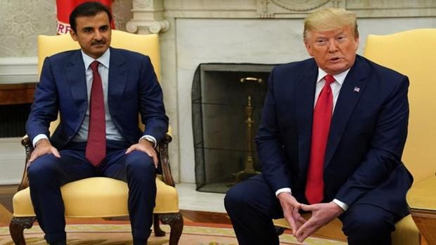 Qatar mua he thong phong khong NASAM va ten lua Patriot cua My hinh anh 1