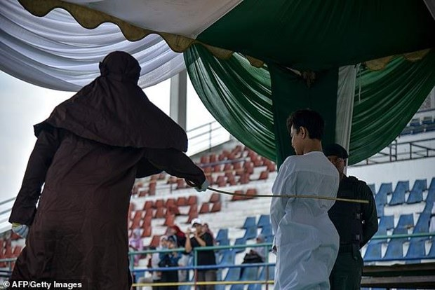 Indonesia: Phat danh 100 roi cac doi tuong san bat dong vat hoang da hinh anh 1