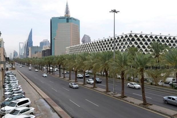 Saudi Arabia tiep quan vi tri Chu tich G20 tu Nhat Ban hinh anh 1