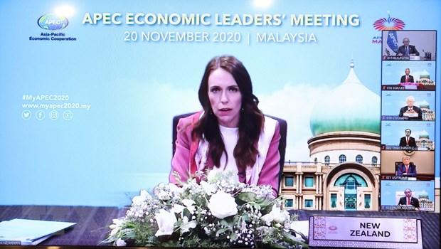 Thong qua Tuyen bo Putrajaya ve tam nhin APEC den nam 2040 hinh anh 1