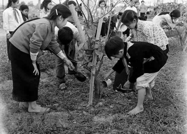 Doi Thieu nien Tien phong Ho Chi Minh - 80 nam viet nen trang su vang hinh anh 3