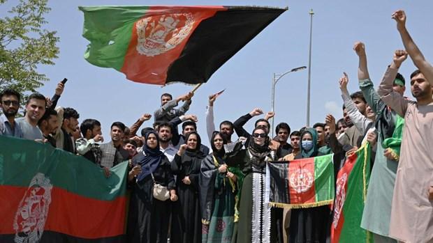 Bieu tinh chong Taliban no ra o nhieu thanh pho tai Afghanistan hinh anh 1