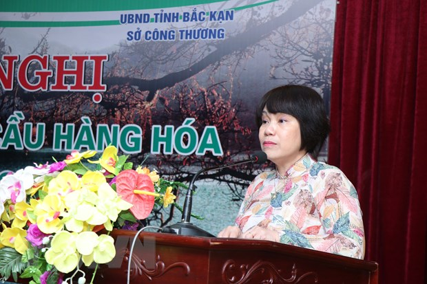 Suc song hang Viet: Be do quan trong cho doanh nghiep trong nuoc hinh anh 1