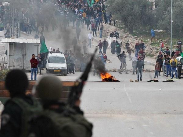 Quan doi Israel da bat giu 350 nguoi Palestine trong thang 1 hinh anh 1