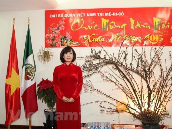 Cong dong nguoi Viet tai Mexico tung bung don Xuan At Mui hinh anh 1
