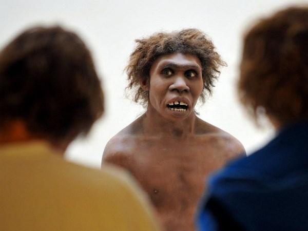 Benh di ung do nguoi Neanderthal giao phoi to tien loai nguoi? hinh anh 1