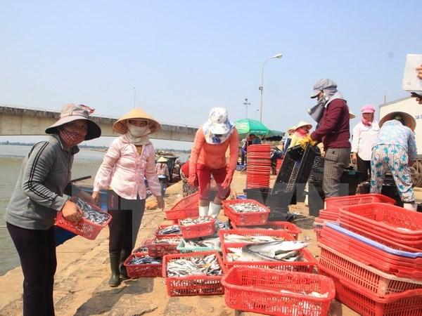 Thanh pho Da Nang kiem tra chat luong cac mat hang thuy san hinh anh 1