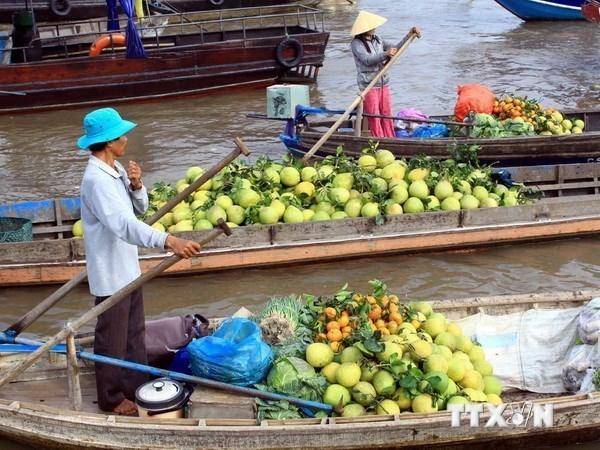 Pho Thu tuong gap go cac lanh dao co nhieu cong hien cho DBSCL hinh anh 1