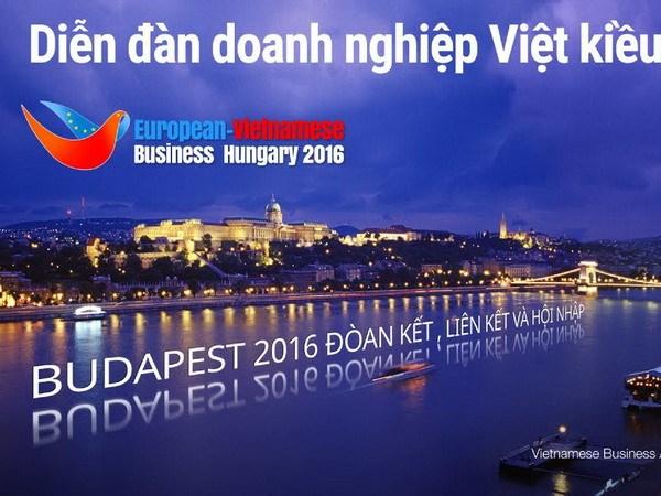 Dien dan Doanh nghiep Viet kieu Chau Au lan thu 10 tai Hungary hinh anh 1