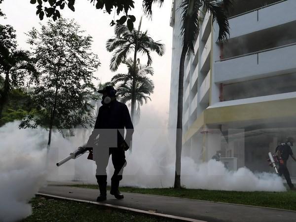 Canh bao nguy co virus Zika lan rong o chau A-Thai Binh Duong hinh anh 1