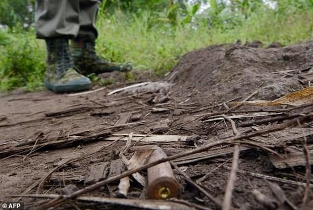 LHQ hoi thuc CHDC Congo dieu tra lai vu sat hai chuyen gia hinh anh 1