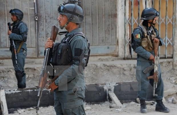 Luc luong an ninh Afghanistan bat chi huy chu chot cua IS hinh anh 1